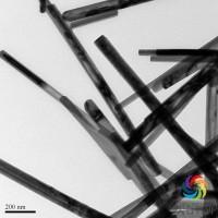 场发射透射电子显微镜F20/F30