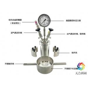 微型反应釜(磁子搅拌)