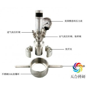微型反应釜(磁耦搅拌)
